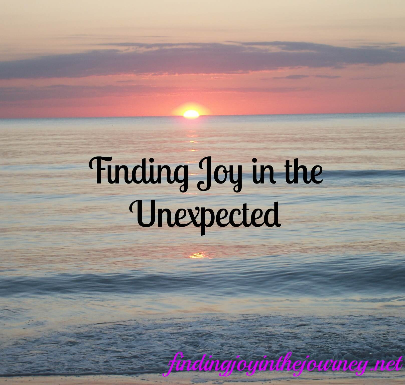 Finding Joy in the Unexpected