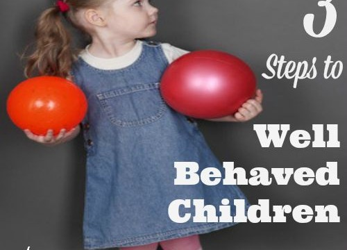 Three Steps to Well Behaved Children