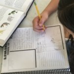 Homeschooling Multiple Ages with Apologia