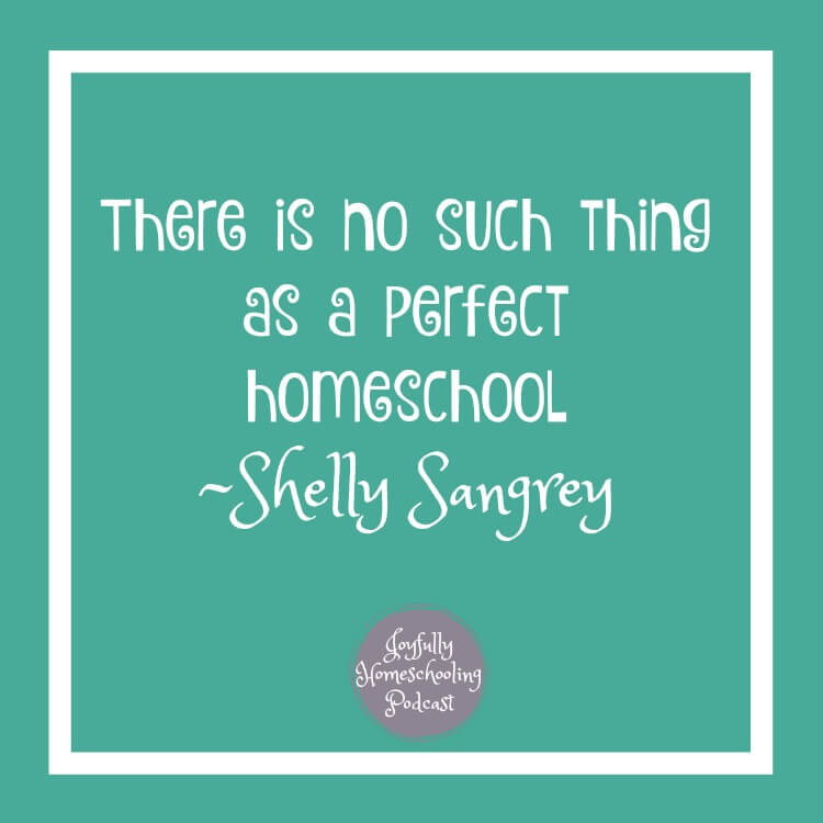 Struggle with perfection in your homeschool? Guess what? There is no such thing as a perfect homeschool.