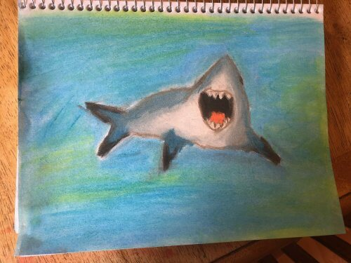 Shark drawing with Chalk Pastels for kids