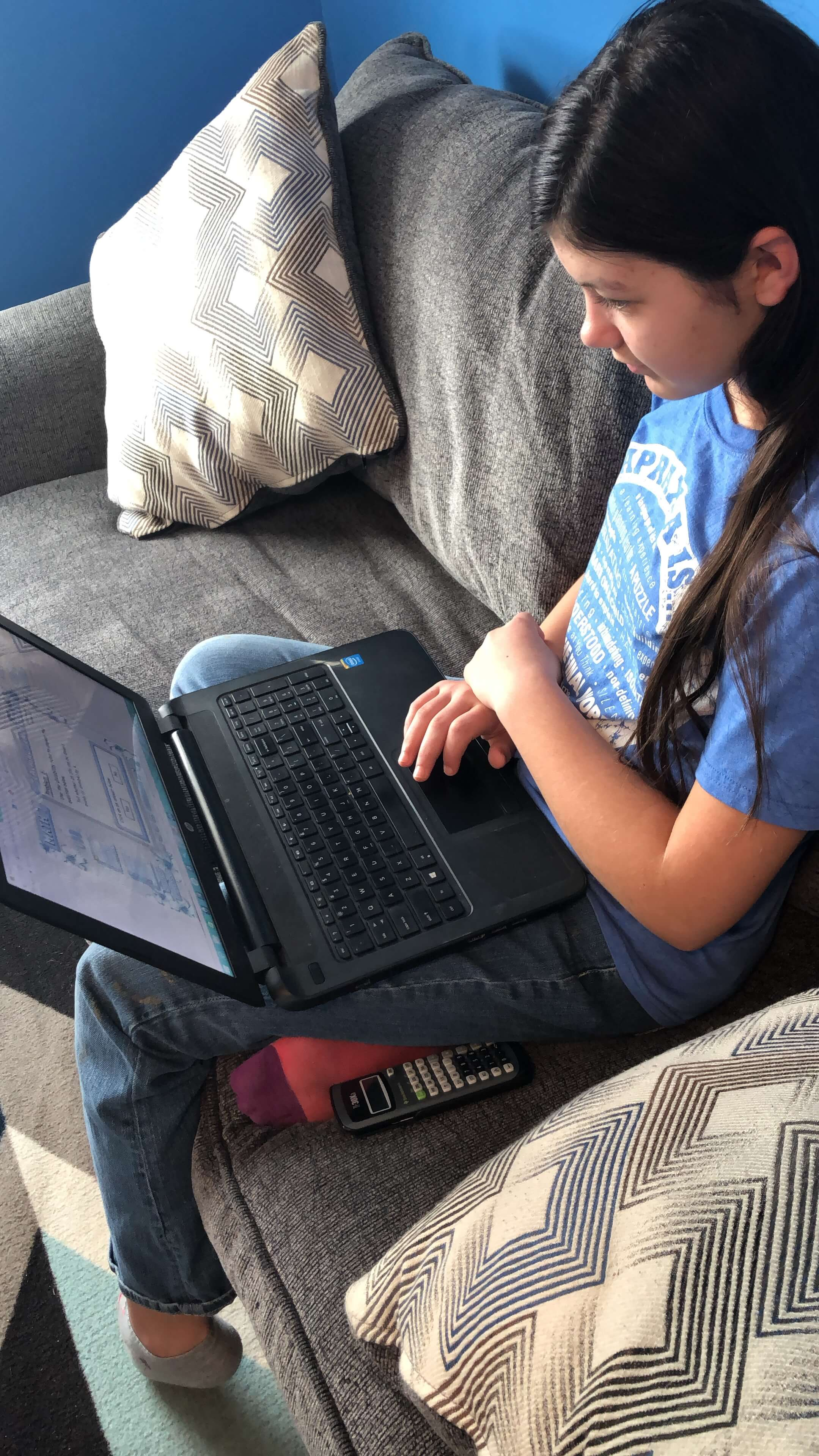 Online learning through Teaching Textbooks is the way to go for homeschool math!