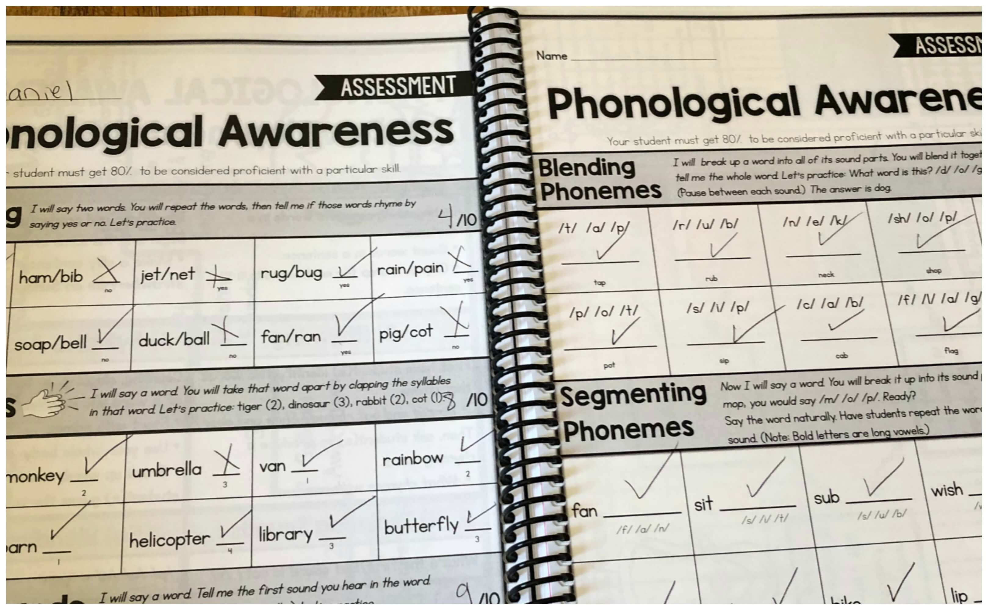 homeschool curriculum for kids with dyslexia