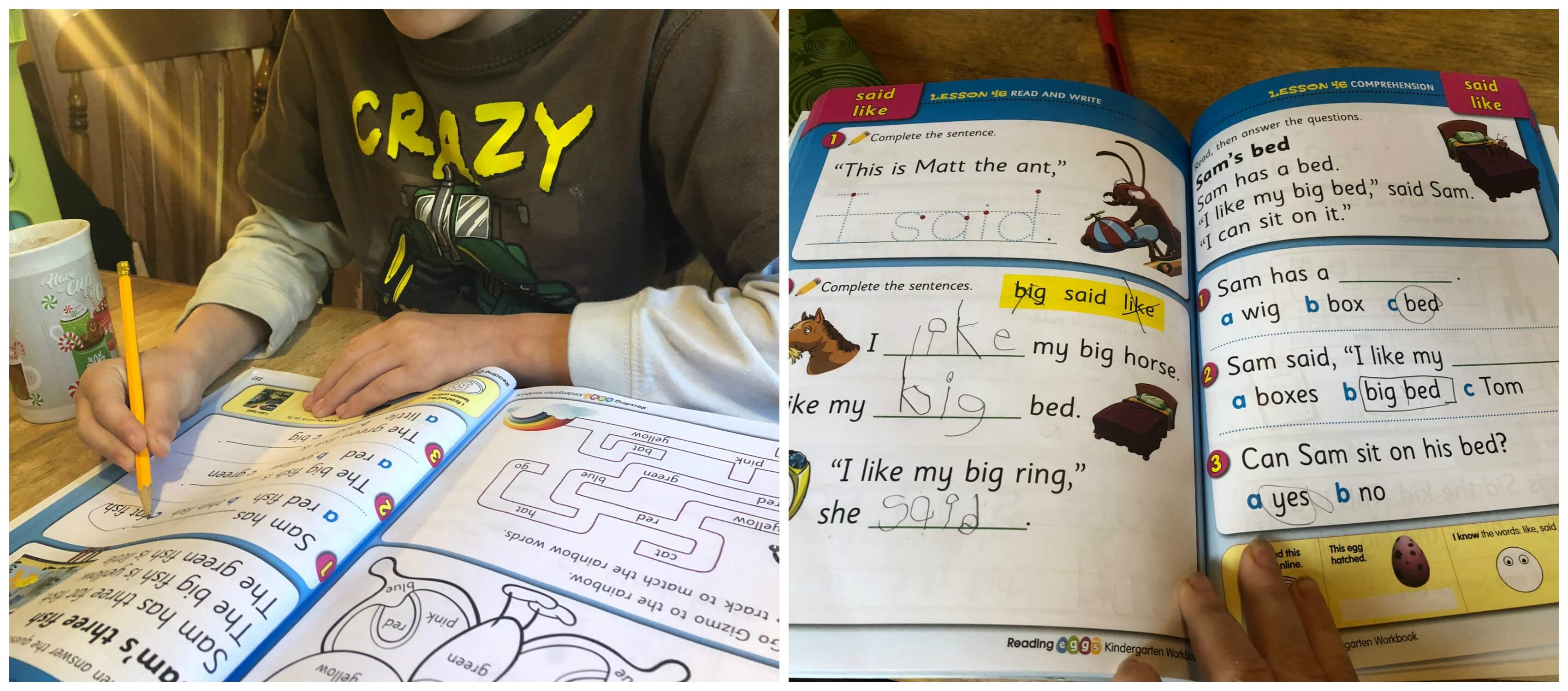 Reading Eggs workbooks extend online learning