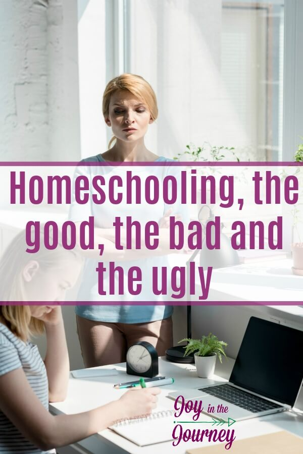 The biggest lesson I have learned is that homeschooling is not easy. There are good and bad things about homeschooling, just like with any form of education. It is a hard choice, and it is not for everyone.