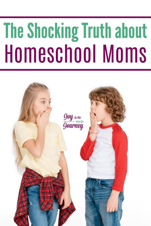 There is a shocking truth about homeschool moms. What it is you would never guess! The truth about homeschool moms is that......