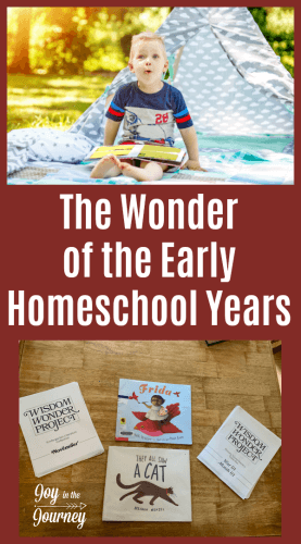 The early homeschool years are supposed to be full of wonder. We want our kids to engage in learning with good books and lots of fun. Here is a way to do just that!